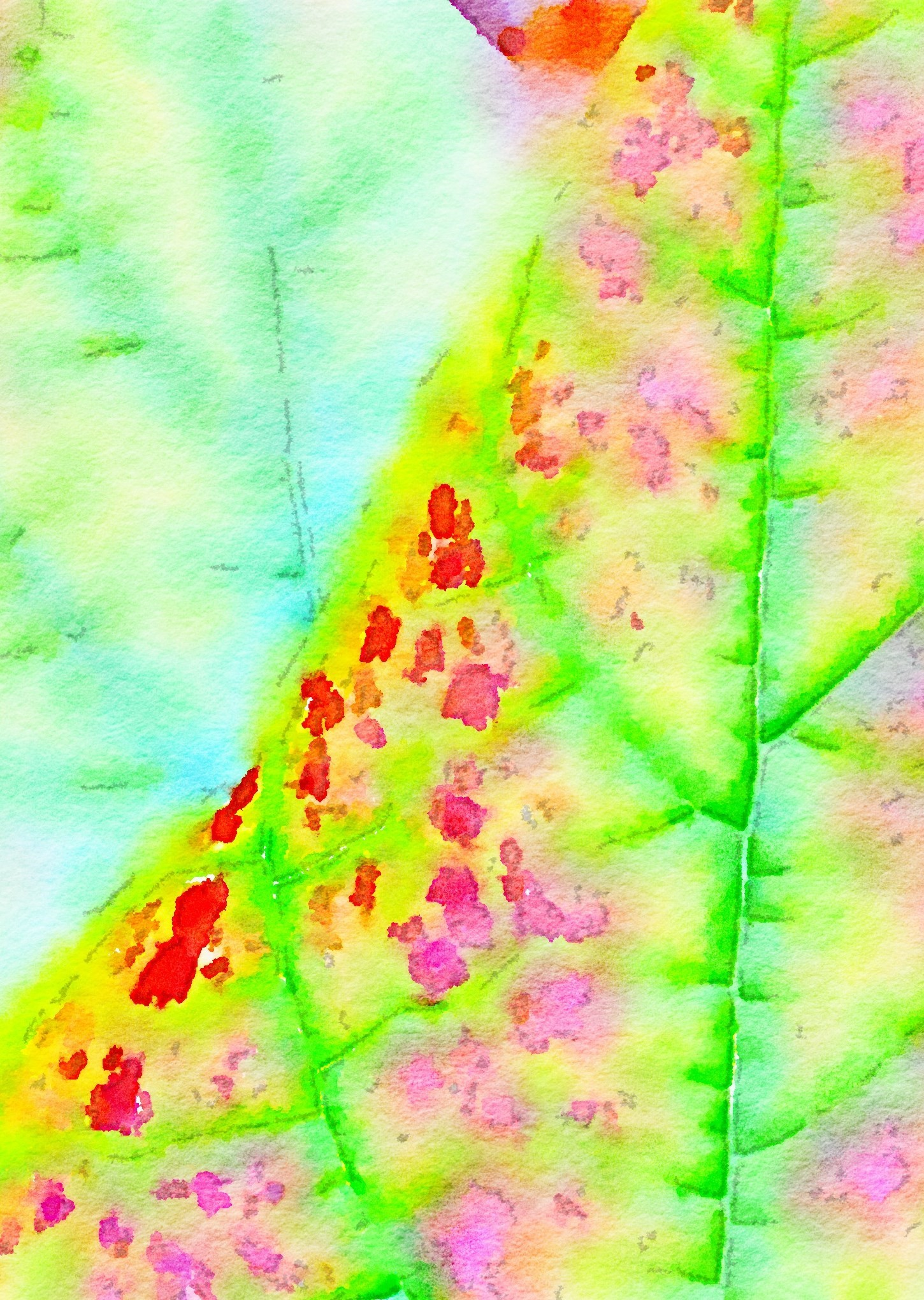 Leaf Detail Photo
