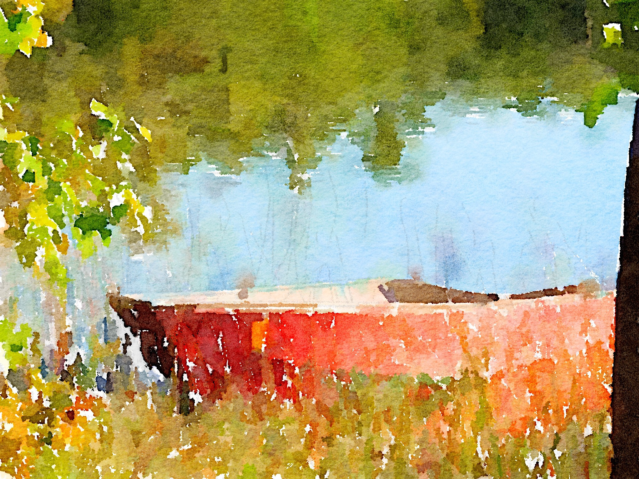 Rowboat Photo