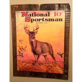 Nation Sportsman